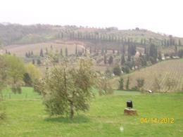 Photo of Rome Tuscany in One Day Sightseeing Tour from Rome italy!!!!!!!!!!!!!!!!!!!!!!! cold a$$ spring of 2012 247