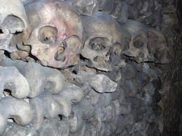 Photo of Paris Skip the Line: Catacombs of Paris Small-Group Walking Tour Skulls and Bones!!!