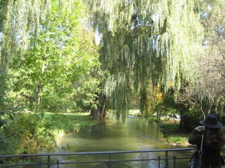 Creeks and Trees - Munich