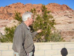 Photo of Las Vegas Red Rock Canyon Luxury Tour Trekker Experience Gorgeous scenery