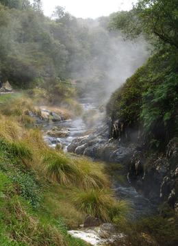 Steaming streams and lush vegetation in the valley of Waimangu geothermal system , Jim and Janet - December 2012