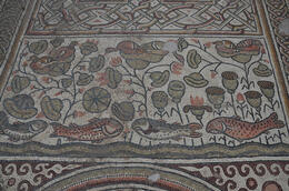 Photo of   Amazing mosaic floor