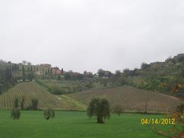 Photo of Rome Tuscany in One Day Sightseeing Tour from Rome italy!!!!!!!!!!!!!!!!!!!!!!! cold a$$ spring of 2012 248