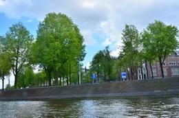 nice trees upon entering the canals , donghenz - June 2012