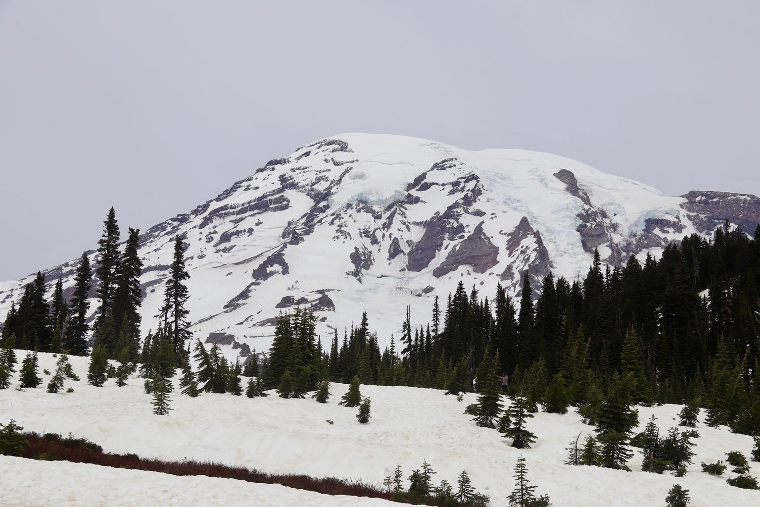 Mt. Rainier Day Trip from Seattle