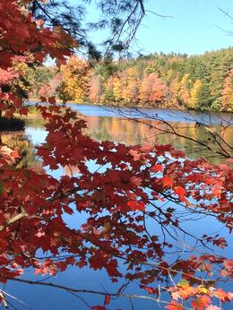 Photo of Boston Fall Foliage Sightseeing Tour from Boston Near Peterborough, New Hampshire (October 12, 2014)