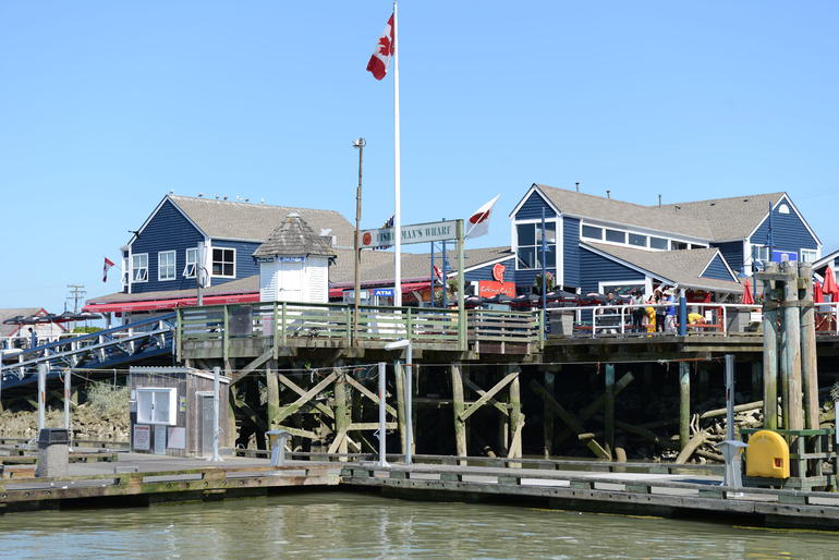 Whale-Watching Tour from Vancouver - Vancouver