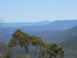 Photo of Sydney Blue Mountains Nature and Wildlife Day Tour from Sydney Blue Mountain