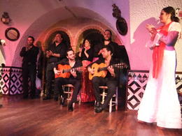 The best show of Flamenco I have seen., Fernando Camarate Santos - February 2013
