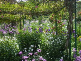 Photo of Paris Giverny and Monet's Garden Bike Tour Monets gardens