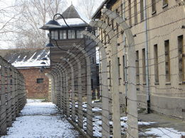 Outside one of the barracks at Auschwitz , Patricia - February 2015