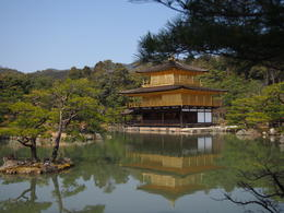 Photo of Kyoto Kyoto Full-Day Sightseeing Tour including Nijo Castle and Kiyomizu Temple The Golden Temple Pavilion