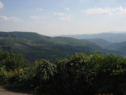 Photo of Florence Chianti Region Wine Tasting Half-Day Trip from Florence Just another beautiful view