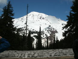 It was an awesome day to see the mountain. , Angela J - June 2013