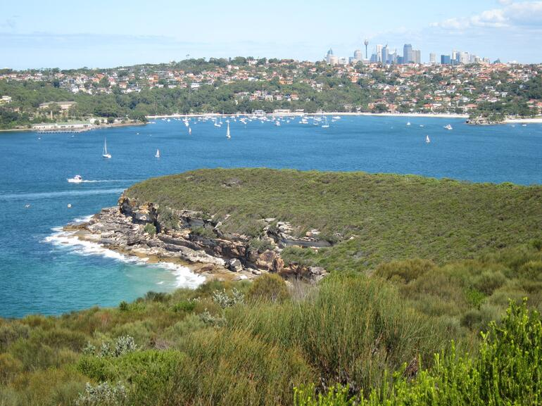 View back to the city - Sydney