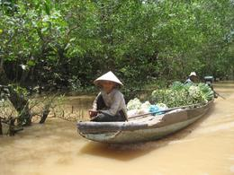 A local woman with her daily delivery of goods from the floating markets, Mekong River Delta - November 2011