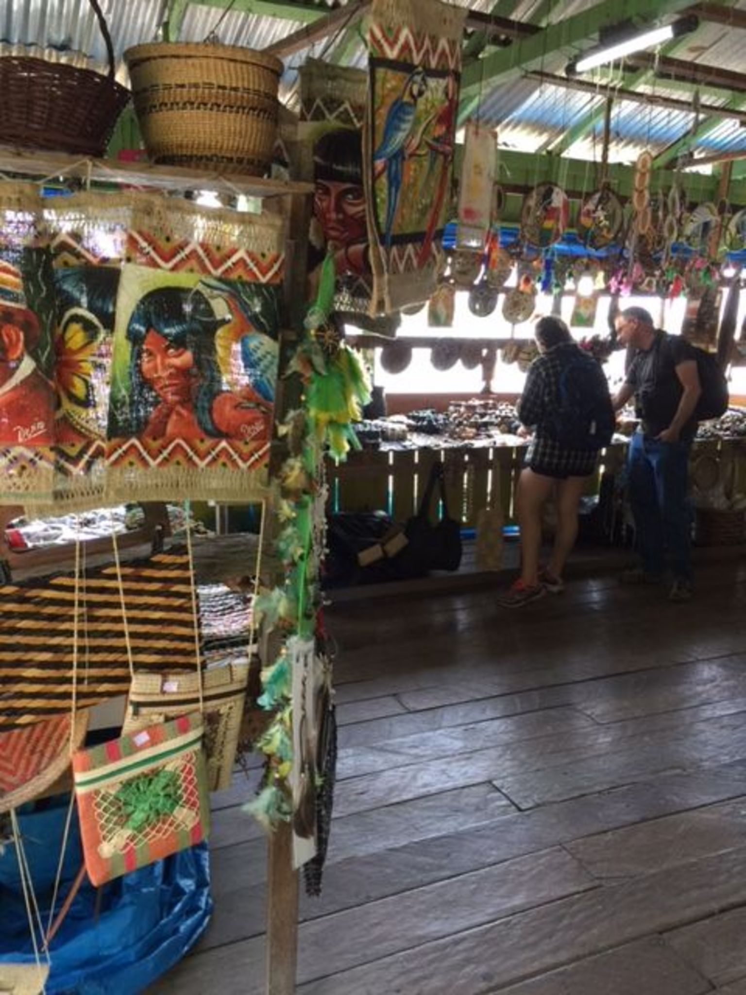 Rio Negro Cruise from Manaus to the Amazon River