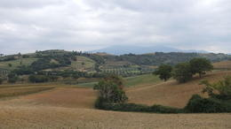 Photo of Rome Tuscany in One Day Sightseeing Tour from Rome Les montagnes en face de la ferme Poggio Il Castellare