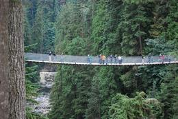 This is the suspension bridge, it can take the weight of two 747 Boeing Jets. Cool Ah., Jennifer H - September 2009