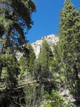 Photo of   Mt. Charleston Hike