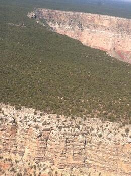 Photo of Las Vegas Deluxe Grand Canyon South Rim Airplane Tour Kaibab National Forest