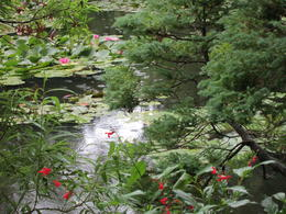 Photo of Paris Auvers sur Oise and Giverny Small Group Day Trip from Paris Monet's water garden