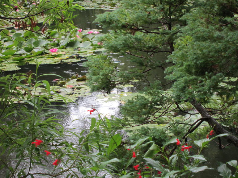 Monet's water garden - Paris
