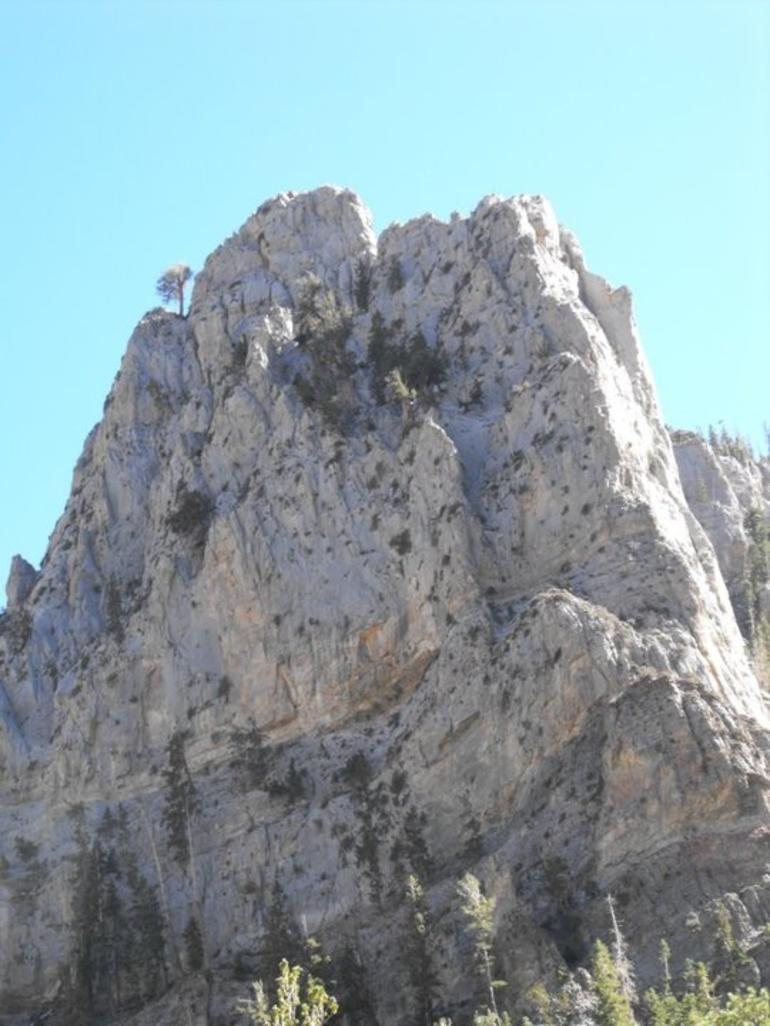 Mt. Charleston Hike - Las Vegas