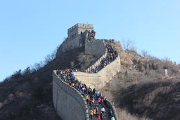 Great Wall at Badaling, Bandit - December 2013