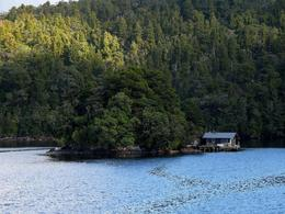 Photo of Fiordland & Milford Sound Doubtful Sound Wilderness Cruise from Te Anau A fishing hut in the sound