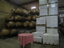 Cellar at Madonna estate - April 2010