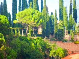 Photo of Barcelona Montserrat Royal Basilica Half-Day Trip from Barcelona The gardens behind the basilica