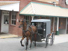 Photo of New York City Philadelphia and Amish Country Day Trip from New York Amish buggy