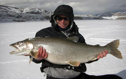 Blue Mesa has some monsters lurking under the ice! , Icefishcolorado - November 2012