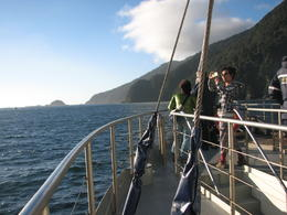 Cruising in Doubtful Sound. , Minda Middleton - March 2013