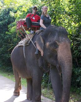 Photo of Bangkok Khao Yai National Park and Elephant Ride Day Trip from Bangkok Driving the Elephant!