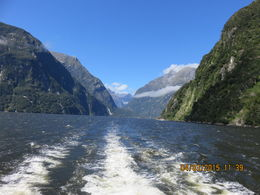 Photo of   Going out to Milford Sound