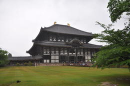 Photo of Kyoto Kyoto and Nara Day Trip from Kyoto including Nijo Castle temple