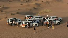 4x4 Dubai Desert Safari - December 2011