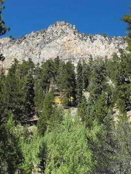 Photo of   Mt. Charleston