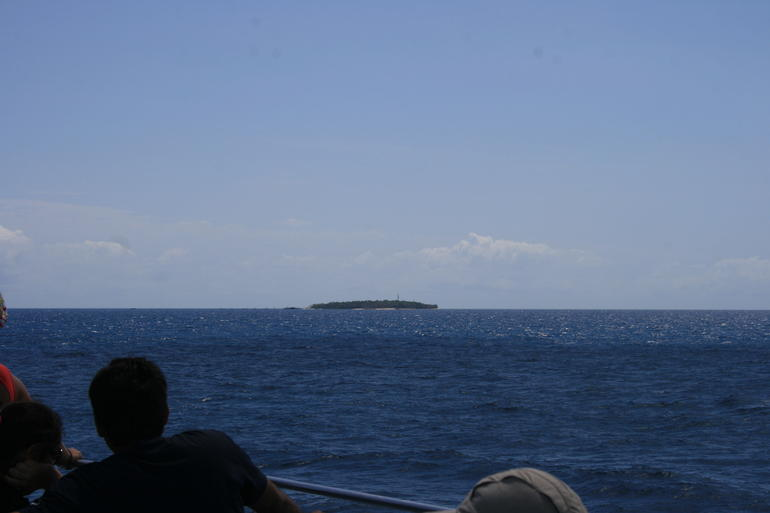 our small island - Cairns & the Tropical North