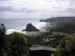 Photo of Auckland Waitakere Ranges Wilderness Experience Eco-Tour from Auckland View of Beach
