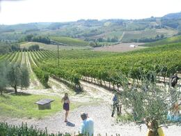 Photo of Florence Tuscany in One Day Sightseeing Tour Wine estate
