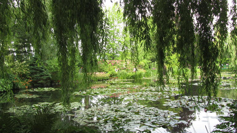 Beautiful Monet Garden - Paris