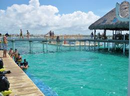 Photo of Punta Cana Punta Cana Reef Explorer: Power Snorkeling, Paddleboarding and Kayaking More of the dock