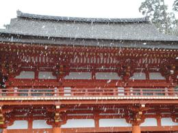 Kasuga Shrine in the snow (late March), Krishnan Vaitheeswaran - April 2010