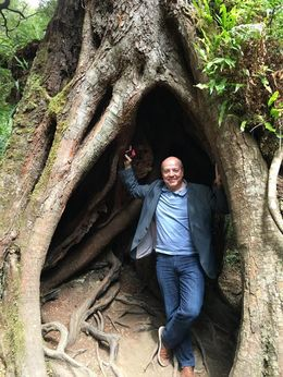 Pretty big trees : , Benny G - October 2015
