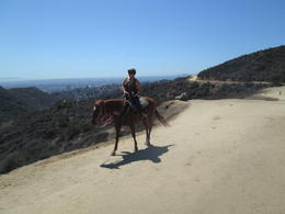 Photo of Anaheim & Buena Park Los Angeles Horseback-Riding Tour to the Hollywood Sign Riding the trails