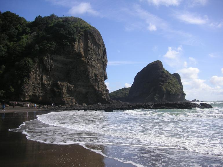 Black Sand Beach, West Coast and rainforest walk, near Auckland