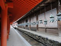 Photo of Osaka Kyoto and Nara Day Tour Including Golden Pavilion and Todai-ji Temple from Osaka Nara